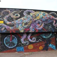 Octopus at Meadowbank Velodrome in Edinburgh, 2016.