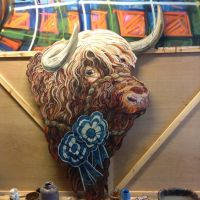 Highland coo cut-out.