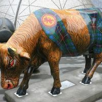 Och Aye The Moo cow, which appeared in the 2006 Cow Parade in Edinburgh.