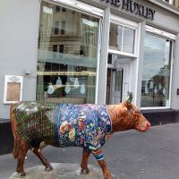 Edinburgh Festival cow