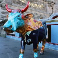 The Tartan Army cow outside the original Scotsman newspaper building on North Bridge in Edinburgh